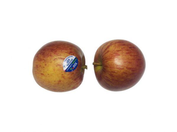 Braeburn Apple