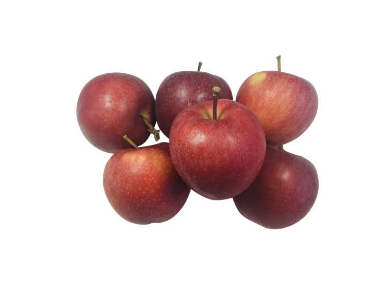 Gala Lunchbox Apples