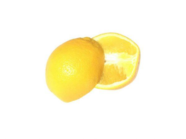 Large Navel Oranges