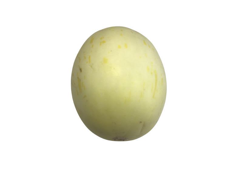 Snowball Melon (Lrg)